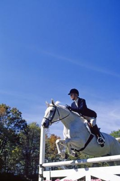 Equestrian Riders and Joint Pain