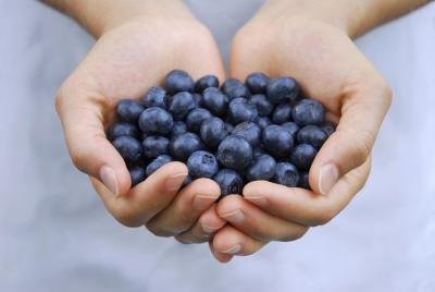 Blueberries for Weight Loss