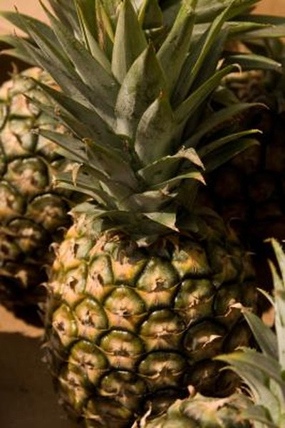 The Anti-Obesity Effects of Pineapple
