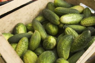 Benefits and Side Effects of Cucumbers