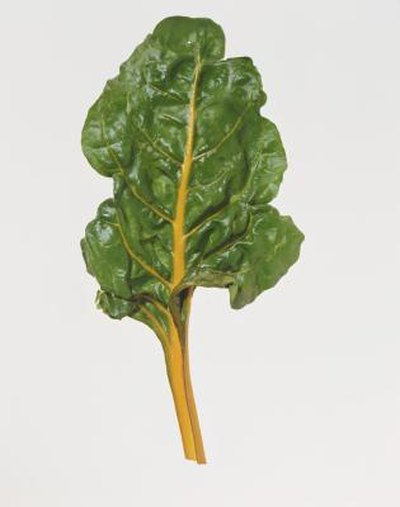 Nutritional Facts of Cooked Swiss Chard