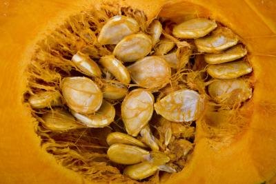 Benefits of Squash Seeds