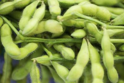 Is Edamame Good for Diabetics?
