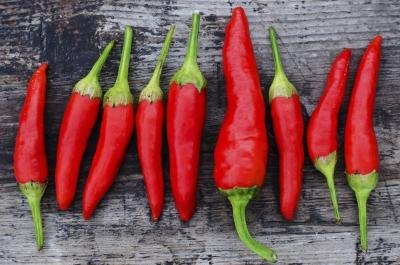 The Cayenne Pepper Diet