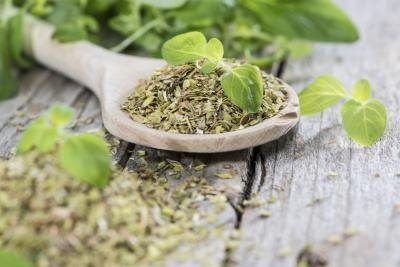 What Are the Benefits of P73 Oregano Oil?