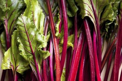 Are Beet Greens and Radish Greens Safe to Eat?