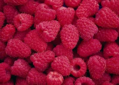 Are Raspberry Seeds Healthy?