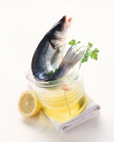 List of the Benefits of Fish Oil in Bodybuilding
