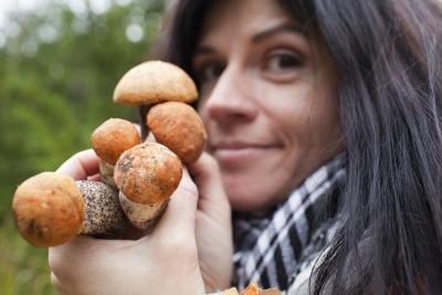 What Are the Benefits of Mushrooms for Pregnant Women?