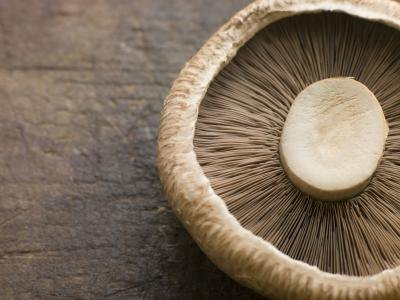 Calories in a Large Portobello Mushroom