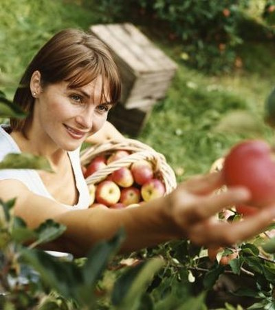 The Best Fruits & Vegetables for Lung Function