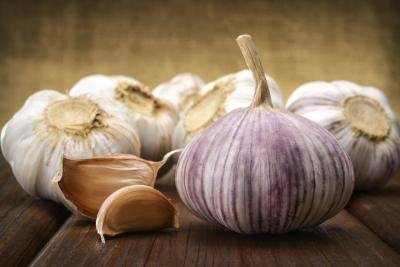 Garlic & Digestion