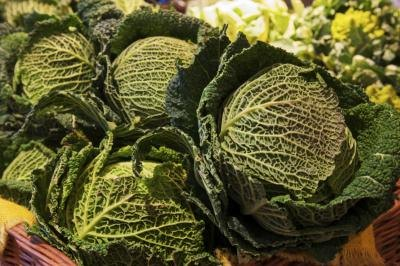Glycemic Index of Cabbage