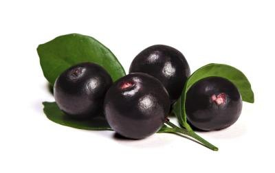 What are the Benefits of Taking Acai Berry Supplements?