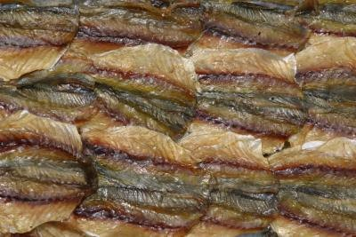 What Is the Fish Oil Content in Anchovies & Sardines?
