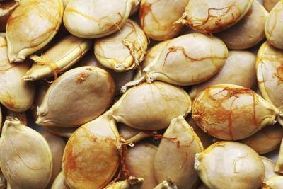 Health Benefits of Pepitas Pumpkin Seeds