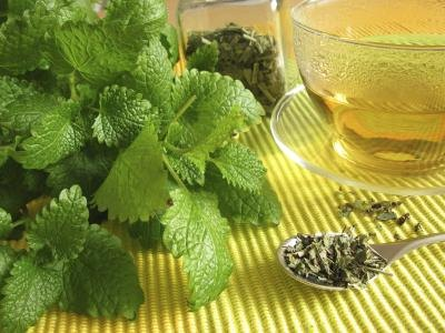Herbal Remedies for Stress & Anxiety