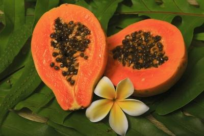 What Are the Benefits of Papaya Juice?