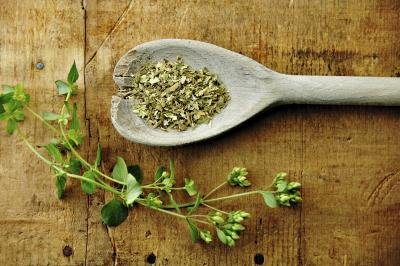 Image result for Oregano