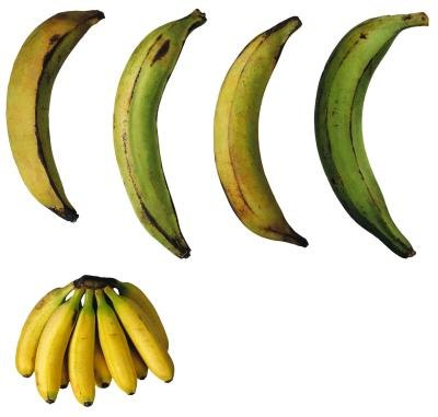 How to Cook Ripe Plantains in the Microwave