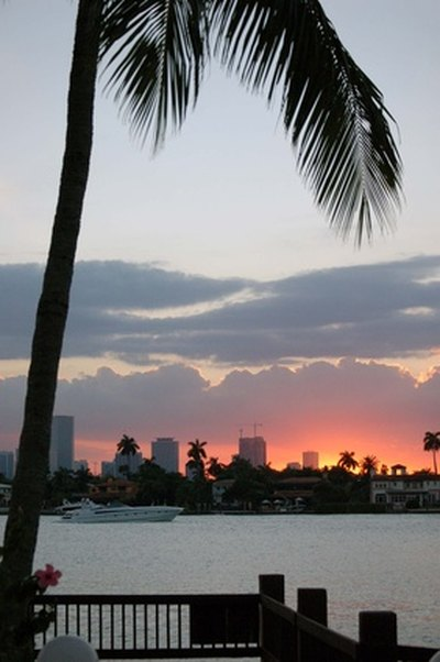 Romantic Things to Do in Miami