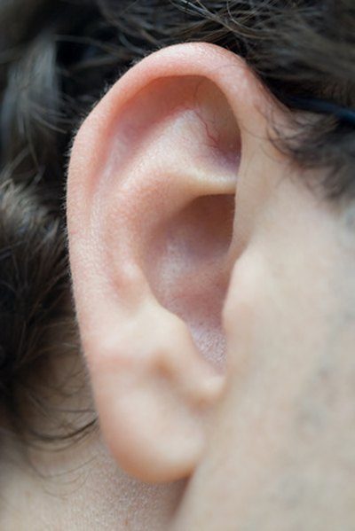 Ear Stapling for Weight Loss in New Jersey