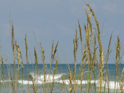 The Closest Beaches to Greensboro, North Carolina