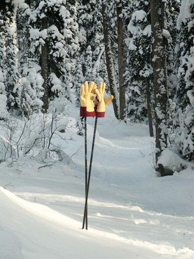 Proper Sizing of Cross-Country Ski Poles