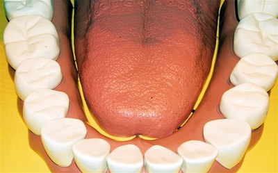 How to Increase Circulation to the Gums
