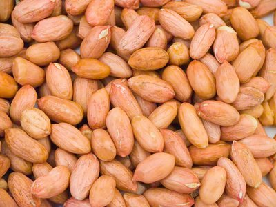 Peanut or Nuts Cause a Burning Sensation in the Mouth