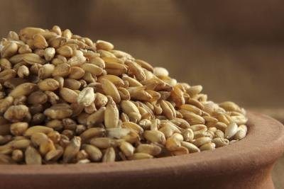 Barley and the Glycemic Index