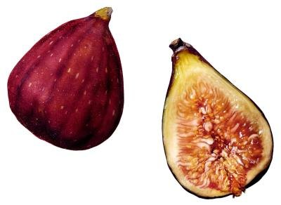 Should I Refrigerate Figs?