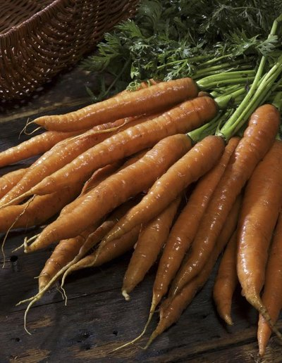 Carrot Allergy Symptoms