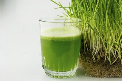 How to Store Wheatgrass Juice
