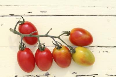Nutrition Information on Grape Tomatoes