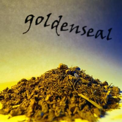 Dosage of Goldenseal Root