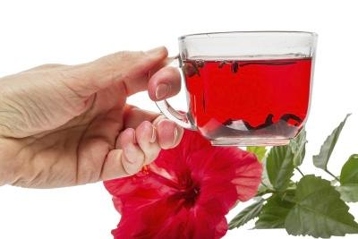 Hibiscus Tea & Pregnancy