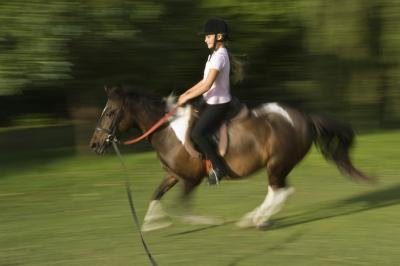 Athletic Training for Equestrian Sports