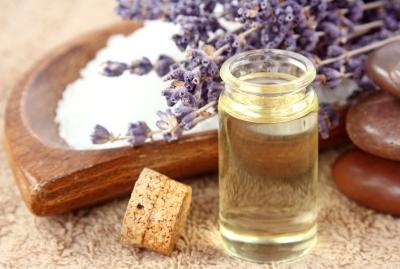 Essential Oils That Naturally Repel Fleas & Ticks