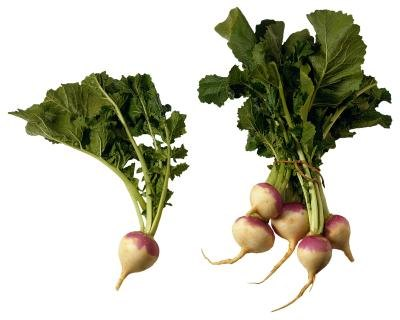 How to Cook Turnip Greens With Roots