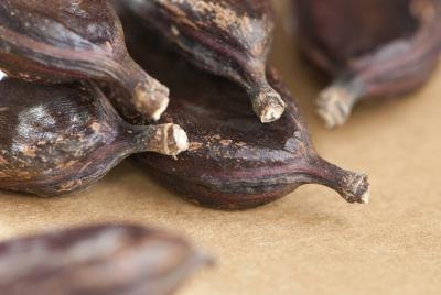 What Are the Benefits of Carob?