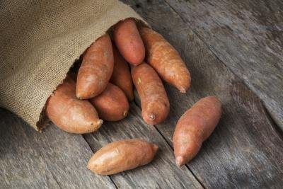 Sweet Potato Nutrition Data