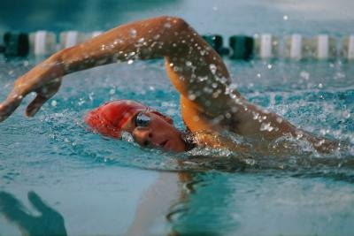 What Is More Important to Swimming: Your Legs or Arms?