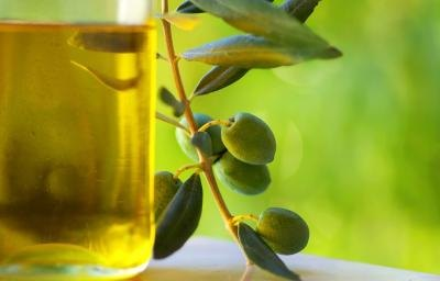Olive Oil Advantages & Disadvantages