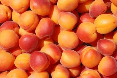 What Are the Health Benefits of Apricots?