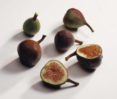 Fig Allergies
