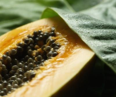 The Nutritional Value of Papaya Seeds