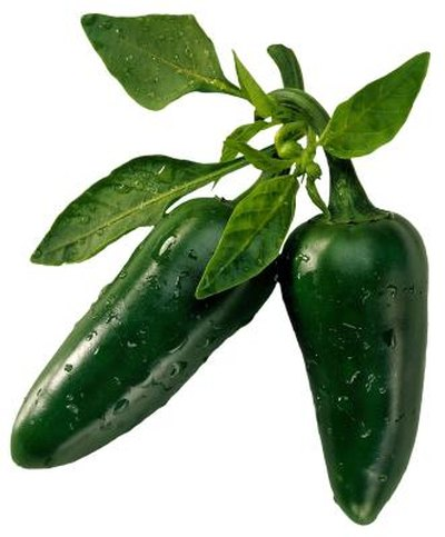 Is Green Chili a Good Diet Food?
