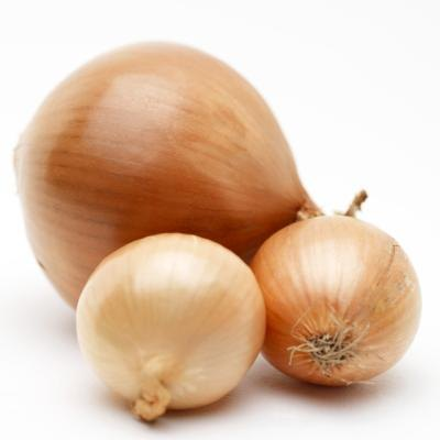 The Soluble Fiber in Onions
