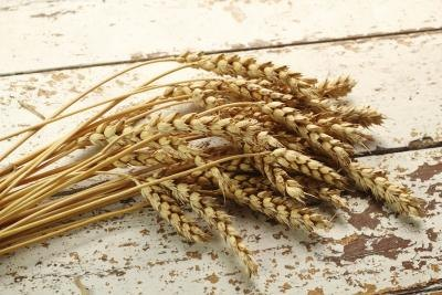 Cracked Wheat Nutrition